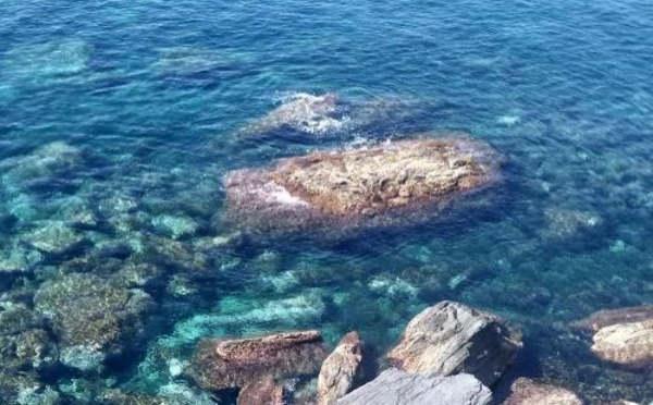 swim in cinque terre